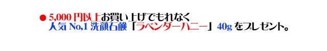 アンティアン4周年記念キャンペーンcopy2