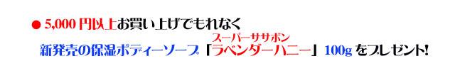 アンティアン5周年記念第2弾3buy,get1freeキャンペーンcopy2