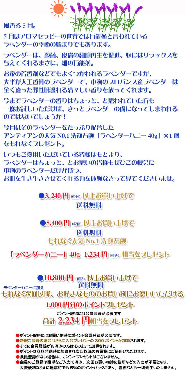 手作り石鹸アンティアン1505キャンペーンcopy