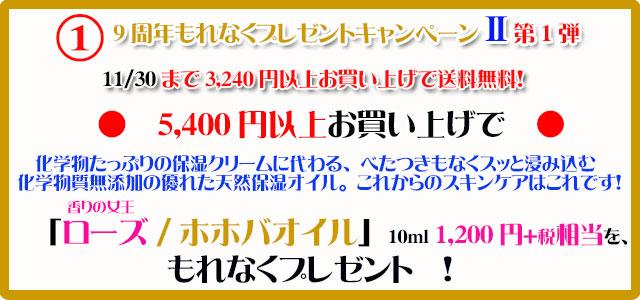手作り石鹸アンティアン1511キャンペーン1