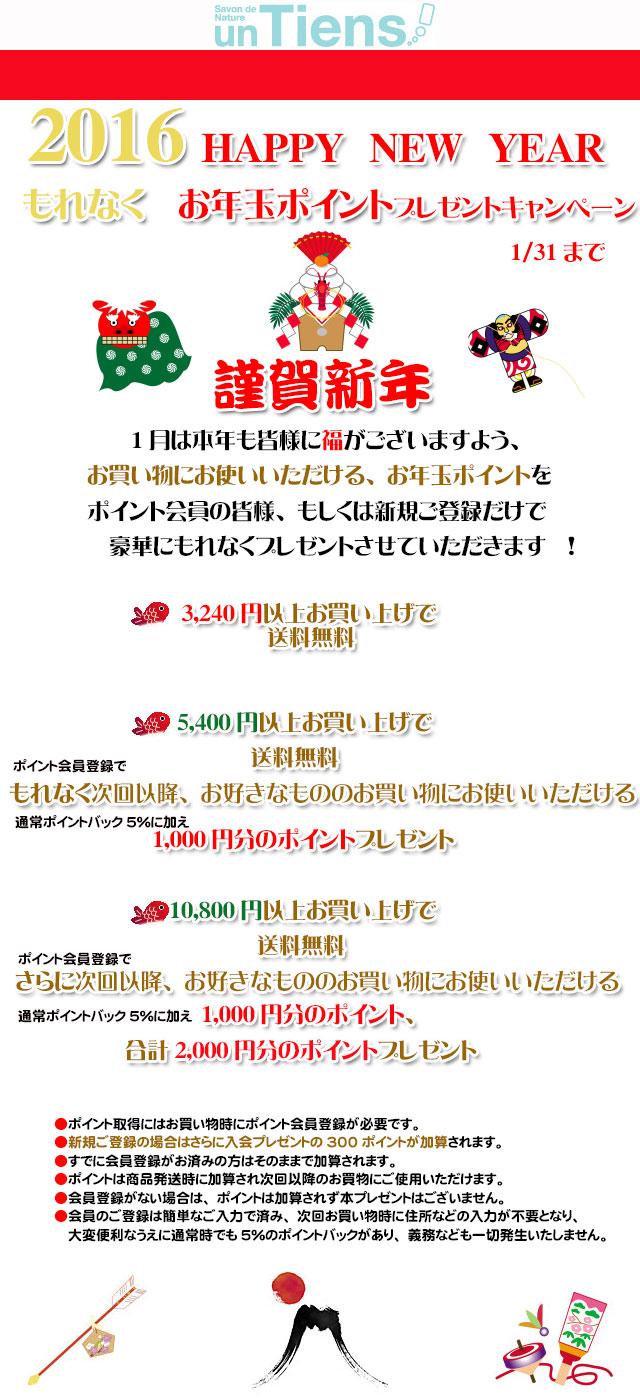 手作り石鹸アンティアン1601 1月のお年玉ポイントプレゼントキャンペーンtop