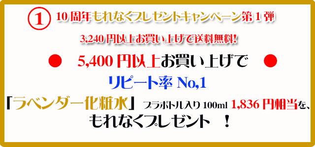 手作り石鹸アンティアン1610キャンペーン1