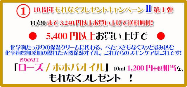 手作り石鹸アンティアン1611キャンペーン1