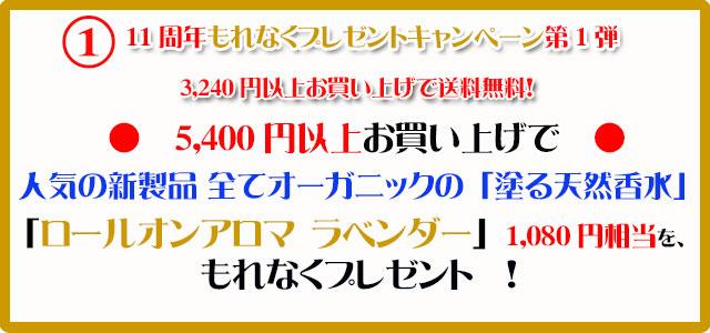 手作り石鹸アンティアン1710今月のキャンペーンcopy1
