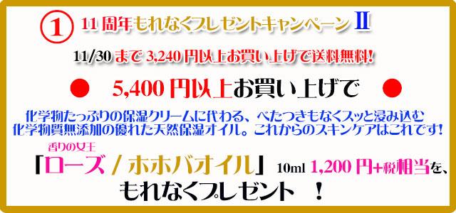 手作り石鹸アンティアン1711キャンペーン1