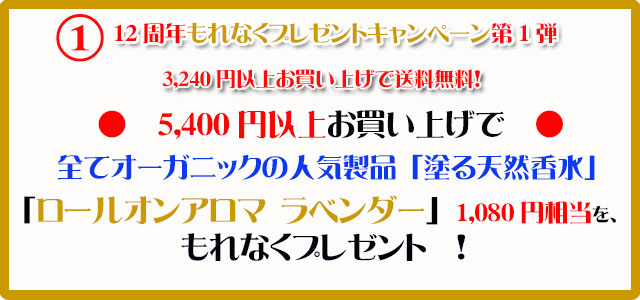手作り石鹸アンティアン1810今月のキャンペーンcopy1