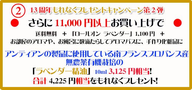 手作り石鹸アンティアン1910今月のキャンペーンcopy2