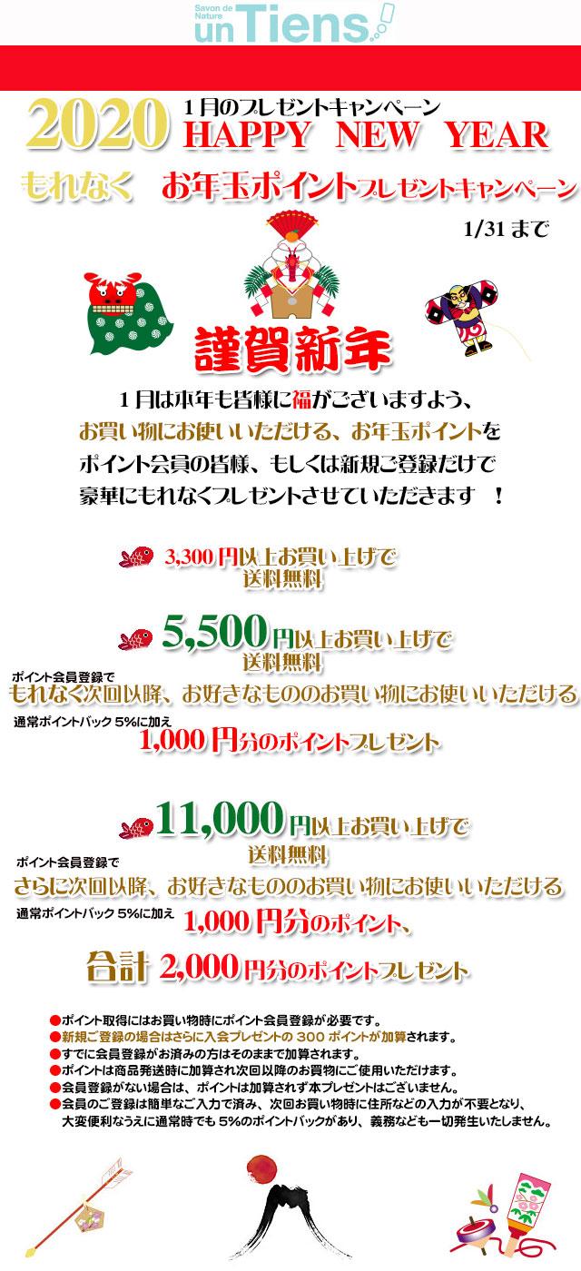 手作り石鹸アンティアン2001キャンペーンtop