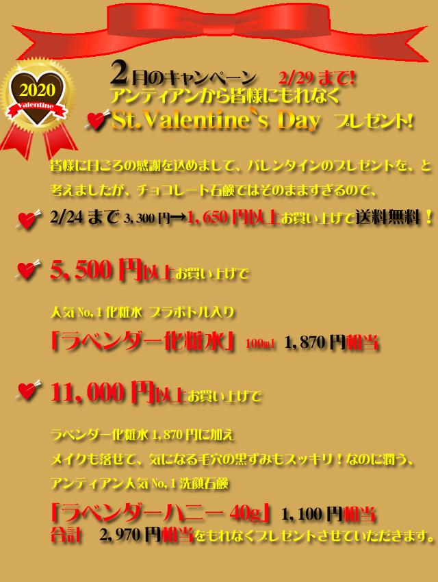 オーガニック化粧品手作り石鹸アンティアン2002今月のキャンペーンtop