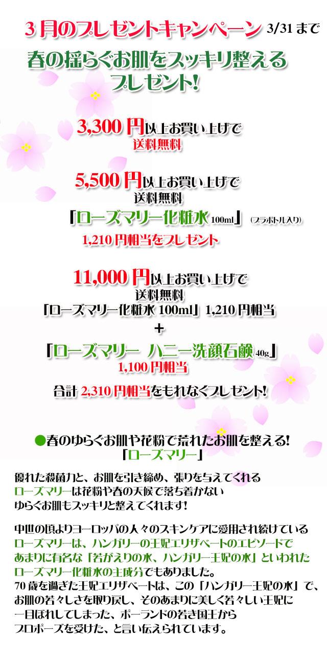 手作り石鹸アンティアン2003キャンペーンtop