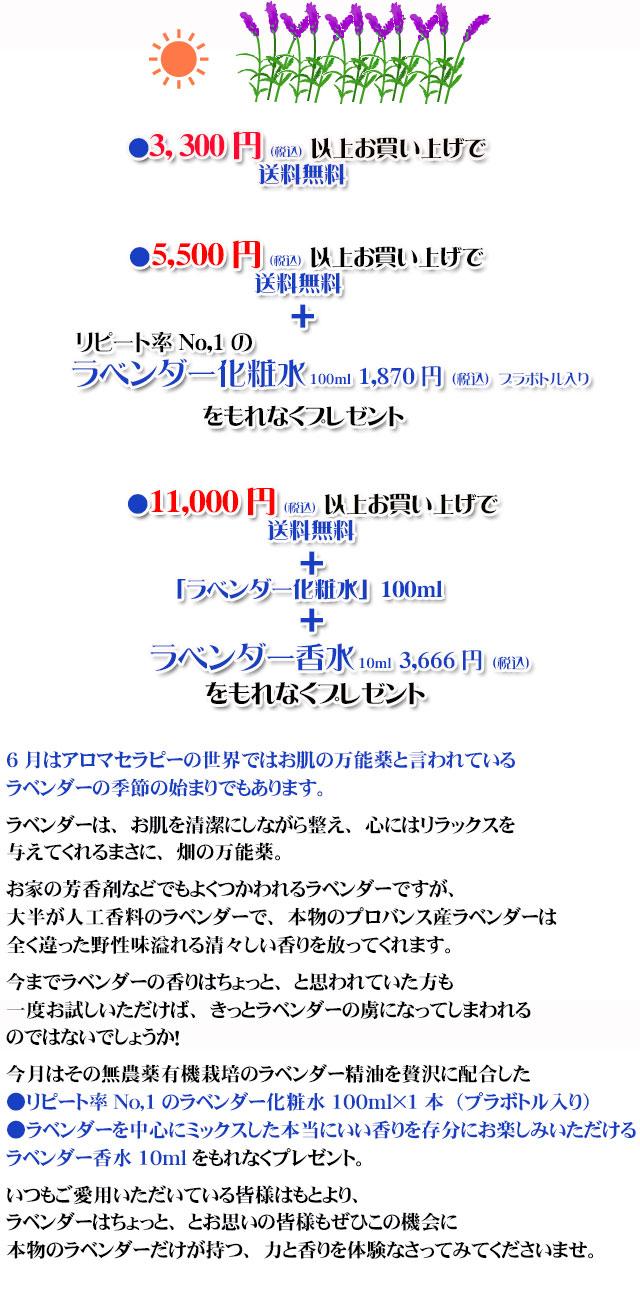 オーガニック化粧品手作り石鹸アンティアン2006今月のキャンペーンcopy