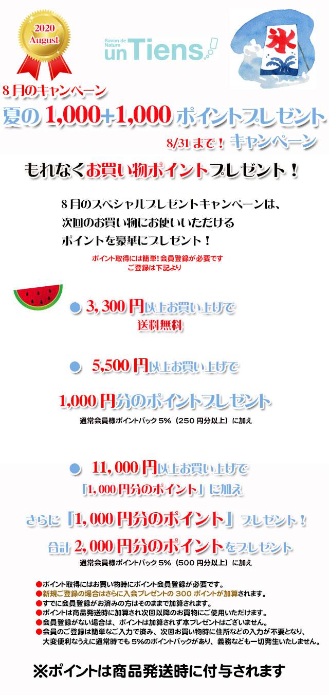 手作り石鹸アンティアン2008今月のキャンペーンtop