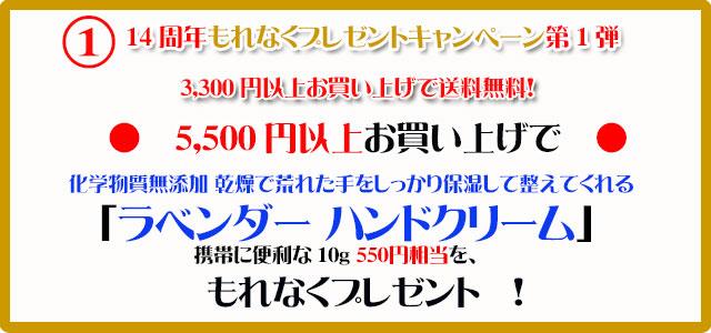 オーガニック化粧品手作り石鹸アンティアン2010今月のキャンペーンcopy1