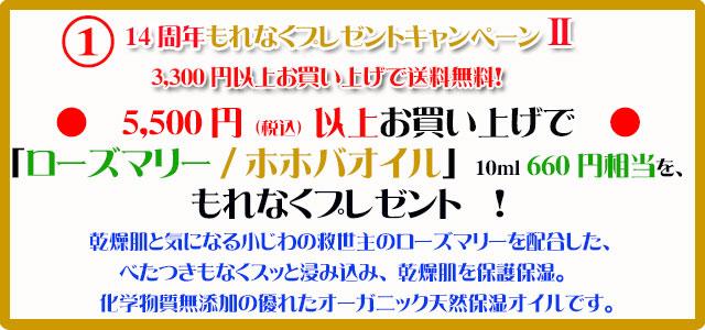 手作り石鹸アンティアン2011キャンペーン1