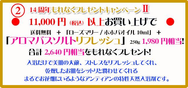 手作り石鹸アンティアン2011キャンペーン2