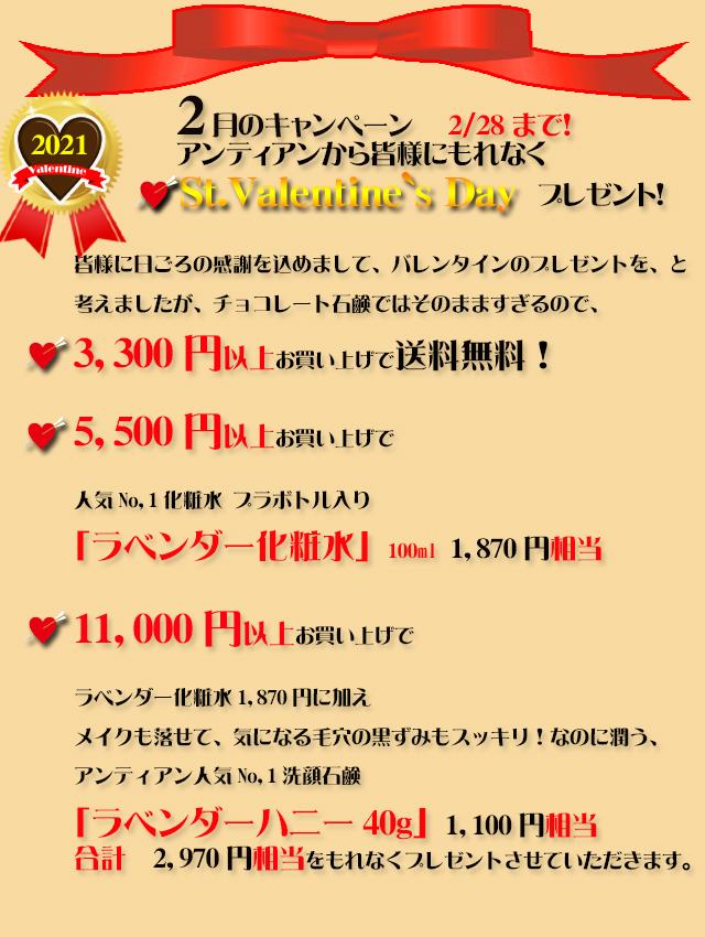 オーガニック化粧品手作り石鹸アンティアン2102今月のキャンペーンtop