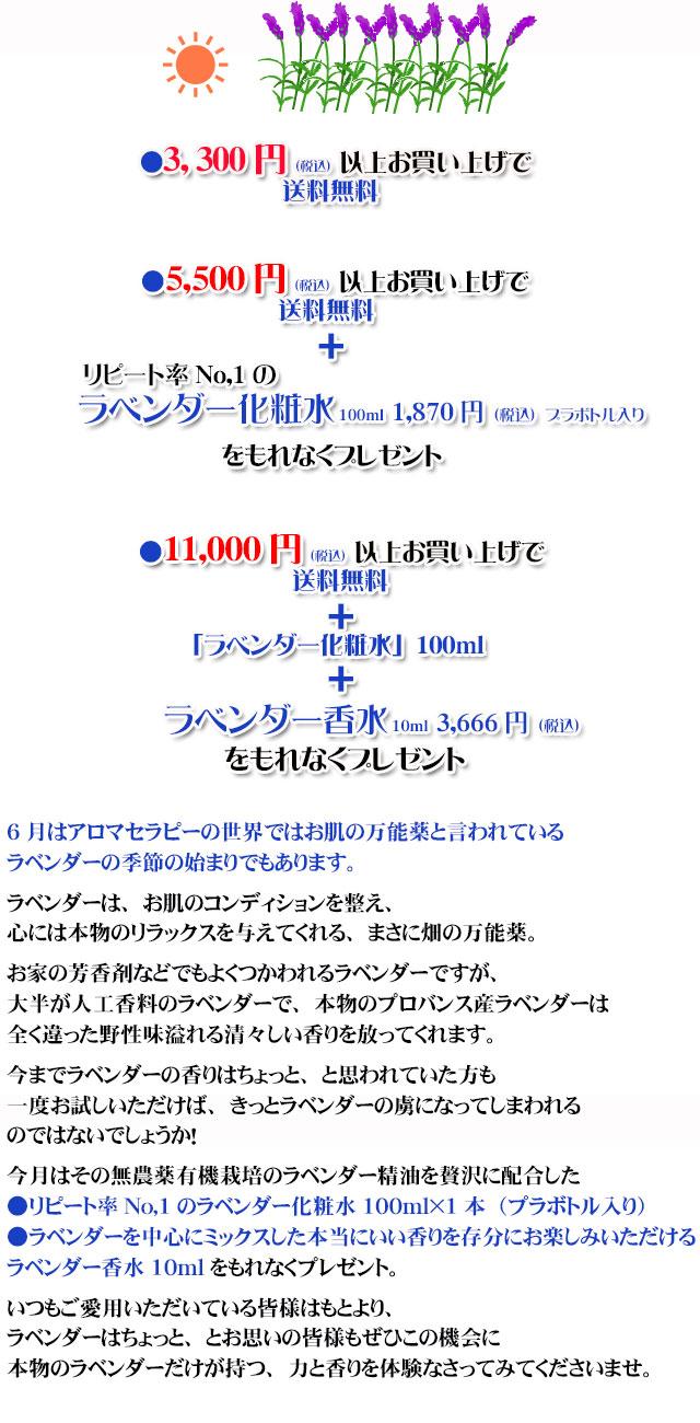 オーガニック化粧品手作り石鹸アンティアン2106今月のキャンペーンcopy