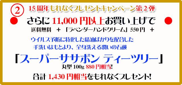 オーガニック化粧品手作り石鹸アンティアン2110今月のキャンペーンcopy2