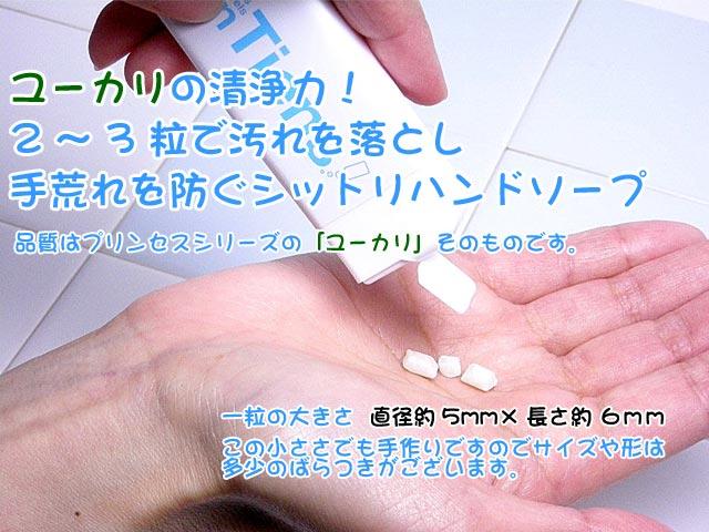 携帯石鹸アンティアン特製携帯ケース入りツブツブハンドソープユーカリ