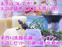 手作り洗顔石鹸 アンティアン 「お試しセット」