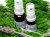手作り石鹸アンティアンの天然香水ラベンダー10,20ml写真